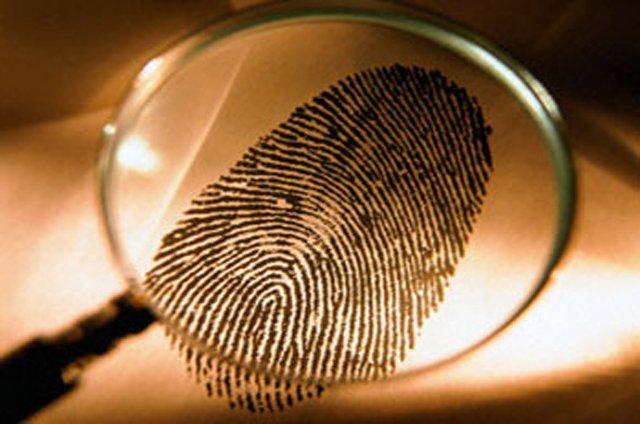 Страховщикам могут позволить вести детективную деятельность