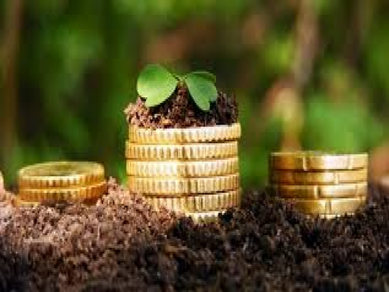 Комитет ГД разработает изменения к закону о сельхозстраховании