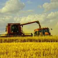 Агрострахование в России может значительно подорожать