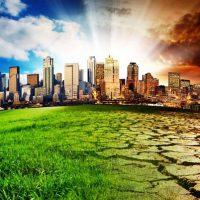 Страховщики согласны с идеей ввести экологическое страхование