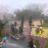 После урагана в Москве страховщики ответили на сотни заявлений